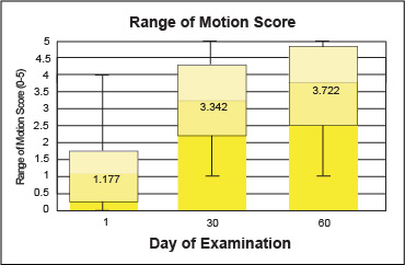 range-of-motion-score
